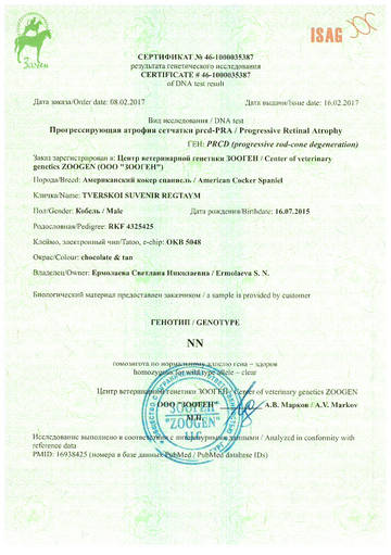 http://sh.uploads.ru/t/LATXD.jpg