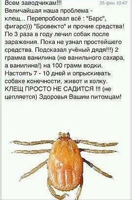 http://sh.uploads.ru/t/LEfBe.jpg