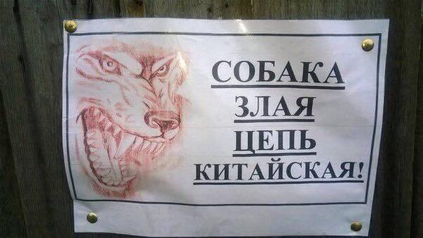 http://sh.uploads.ru/t/LQU1N.jpg