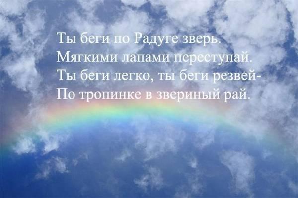 http://sh.uploads.ru/t/LSxCo.jpg
