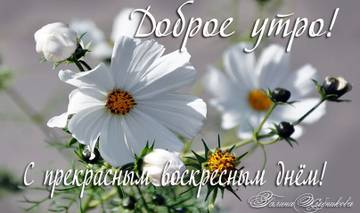 http://sh.uploads.ru/t/LUqyp.jpg