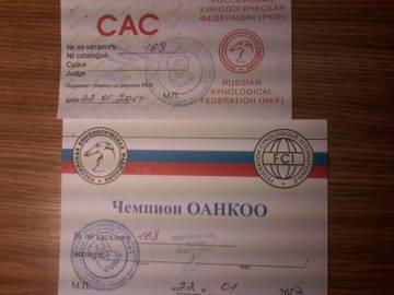 http://sh.uploads.ru/t/Lj98s.jpg