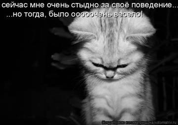 http://sh.uploads.ru/t/LjtYW.jpg