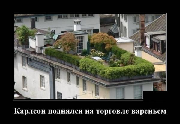 http://sh.uploads.ru/t/Luct4.jpg