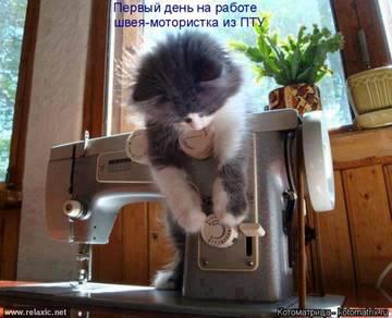 http://sh.uploads.ru/t/MJY4W.jpg