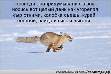 http://sh.uploads.ru/t/MqU0I.jpg
