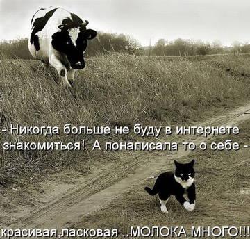 http://sh.uploads.ru/t/Mqe4t.jpg