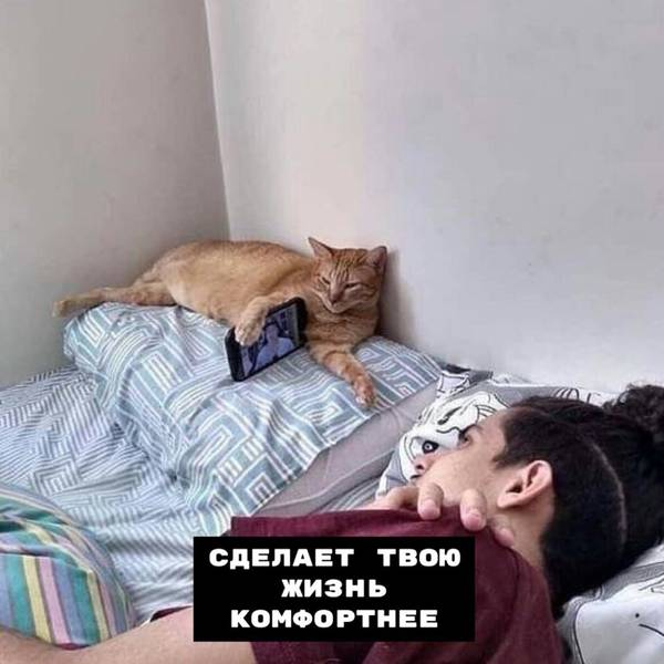 http://sh.uploads.ru/t/NSa2B.jpg