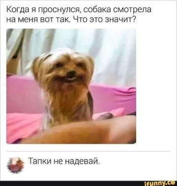 http://sh.uploads.ru/t/NWsp6.jpg