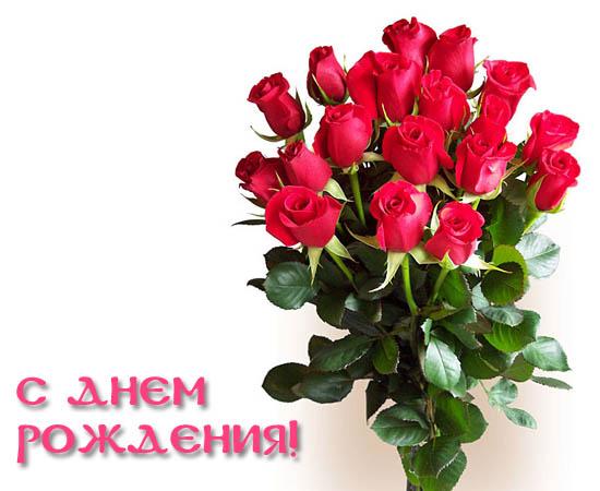 http://sh.uploads.ru/t/Njg39.jpg