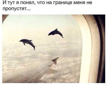 http://sh.uploads.ru/t/NnpHi.jpg