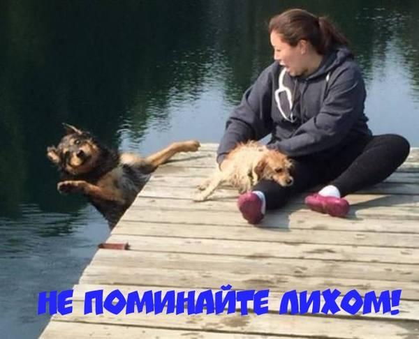 http://sh.uploads.ru/t/NqEX9.jpg