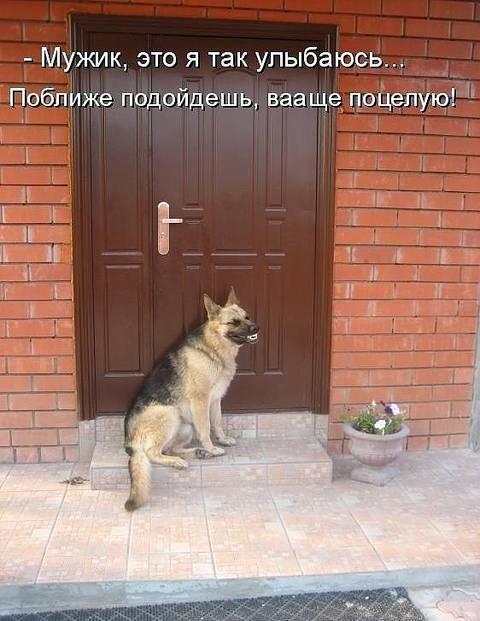 http://sh.uploads.ru/t/NwZoy.jpg
