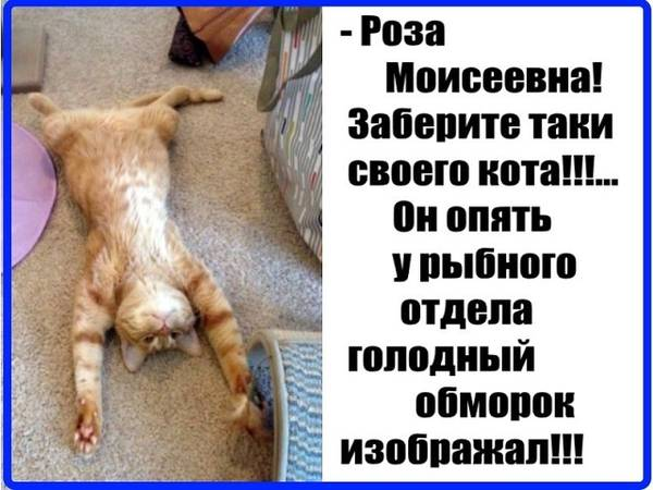 http://sh.uploads.ru/t/OKaB6.jpg