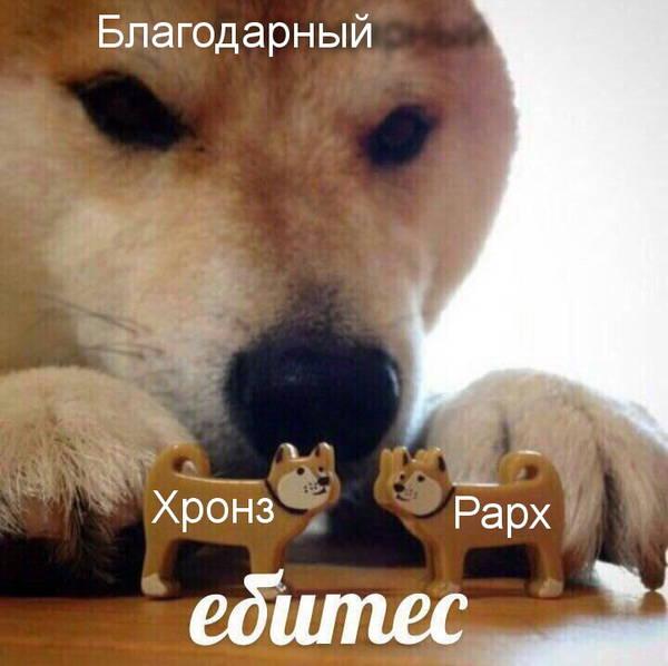 http://sh.uploads.ru/t/OMrbQ.jpg