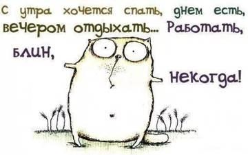 http://sh.uploads.ru/t/OWGaR.jpg