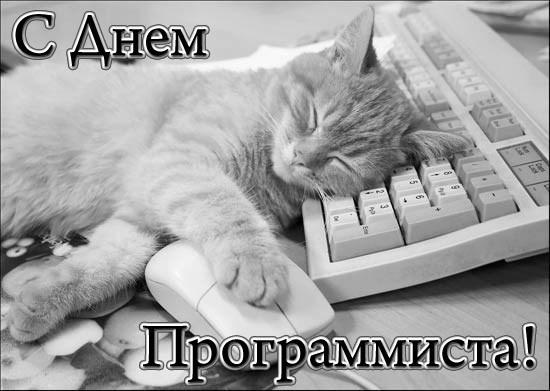 http://sh.uploads.ru/t/OecPY.jpg