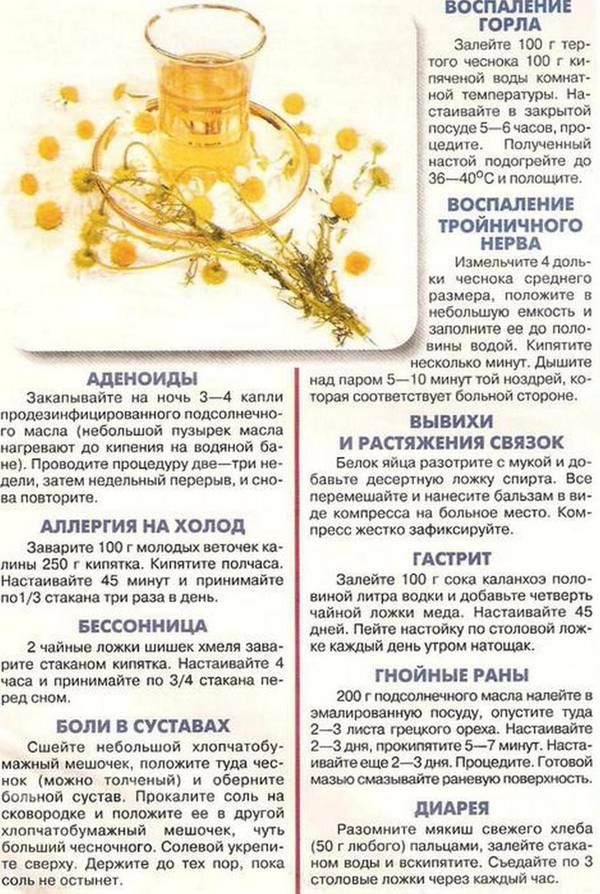 http://sh.uploads.ru/t/Oz68Y.jpg