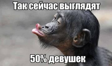 http://sh.uploads.ru/t/PED8j.jpg