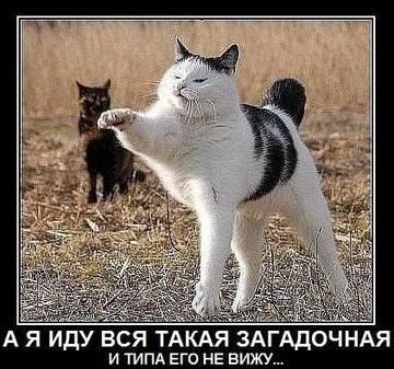 http://sh.uploads.ru/t/PG3Fv.jpg