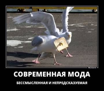 http://sh.uploads.ru/t/PbW7u.jpg