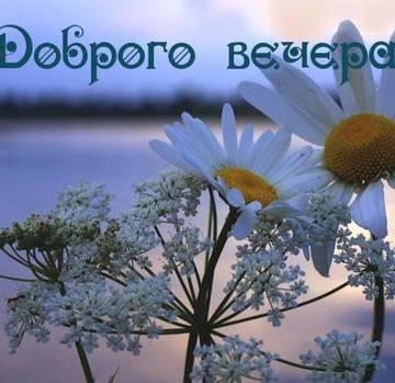 http://sh.uploads.ru/t/Phwrc.jpg