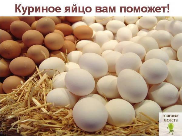 http://sh.uploads.ru/t/Q6h2z.jpg