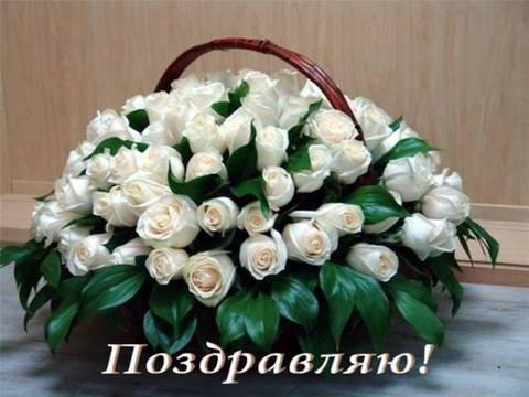 http://sh.uploads.ru/t/QHE4o.jpg