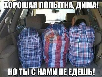 http://sh.uploads.ru/t/QU3mi.jpg