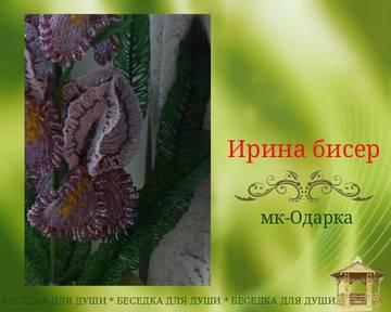 http://sh.uploads.ru/t/QovRN.jpg
