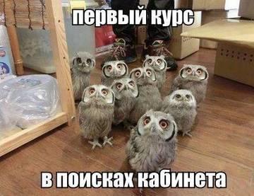 http://sh.uploads.ru/t/QywnC.jpg