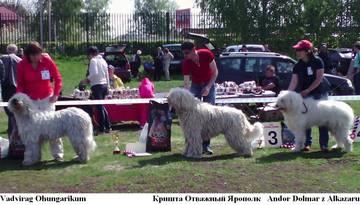 http://sh.uploads.ru/t/R08Ha.jpg