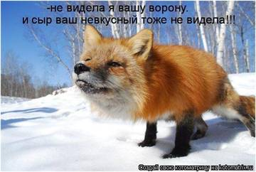 http://sh.uploads.ru/t/R1WsS.jpg