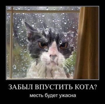 http://sh.uploads.ru/t/R5L1h.jpg