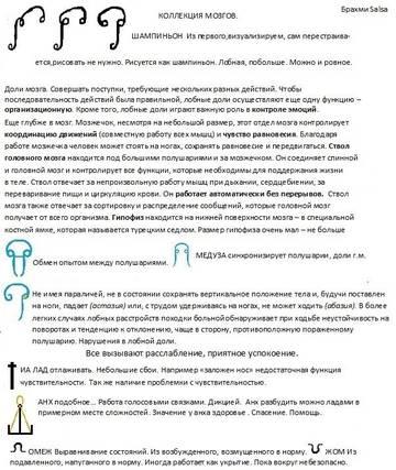 http://sh.uploads.ru/t/RueOW.jpg