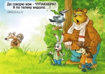 http://sh.uploads.ru/t/Ry8lh.jpg