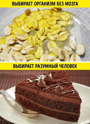 http://sh.uploads.ru/t/S6E8f.jpg
