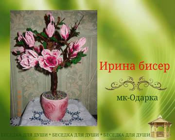 http://sh.uploads.ru/t/SU0tq.jpg
