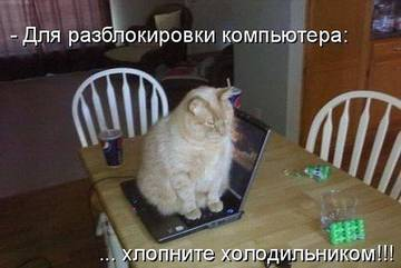 http://sh.uploads.ru/t/SbuYm.jpg