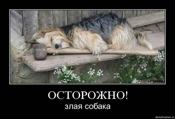 http://sh.uploads.ru/t/SiH7e.jpg