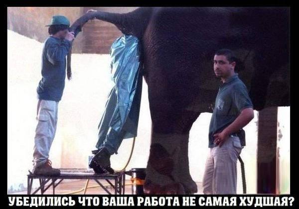 http://sh.uploads.ru/t/TLtU8.jpg