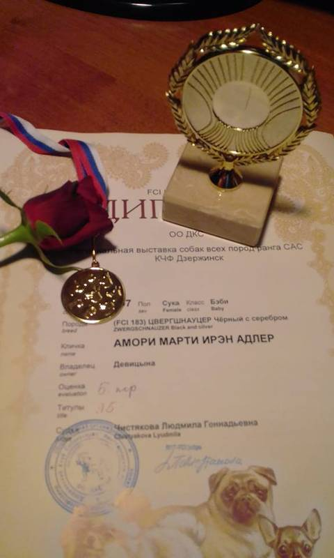 http://sh.uploads.ru/t/TRoAy.jpg
