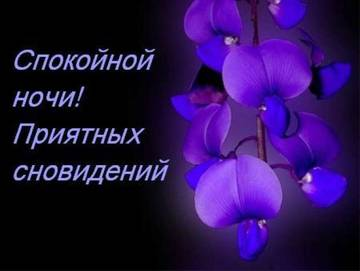 http://sh.uploads.ru/t/TZBub.jpg