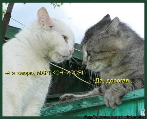 http://sh.uploads.ru/t/Td1xE.jpg