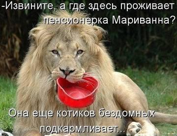 http://sh.uploads.ru/t/ThDU4.jpg