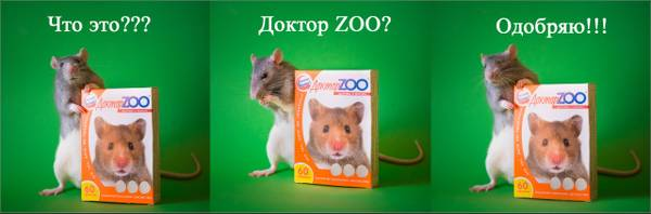 http://sh.uploads.ru/t/ToXl7.jpg