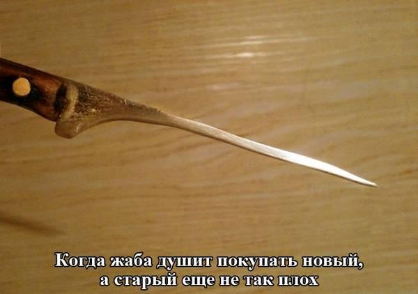 http://sh.uploads.ru/t/U16zH.jpg