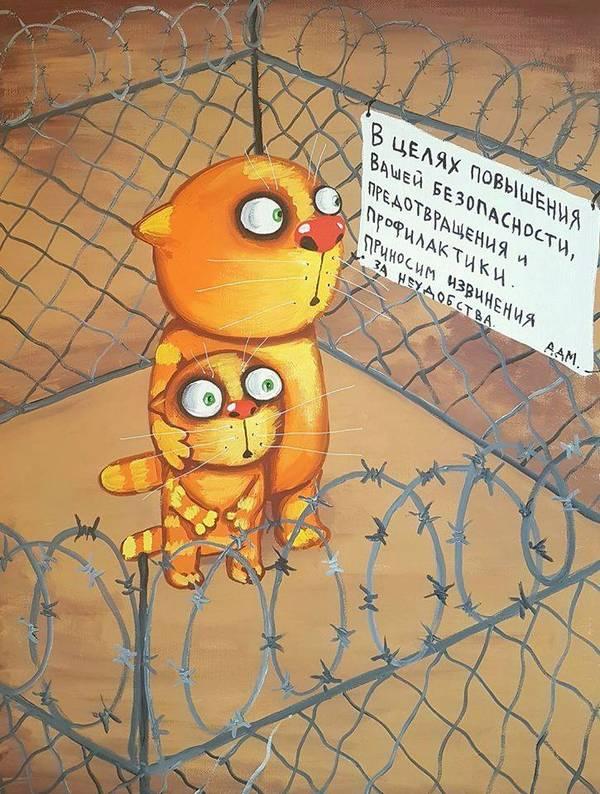 http://sh.uploads.ru/t/UMRbv.jpg