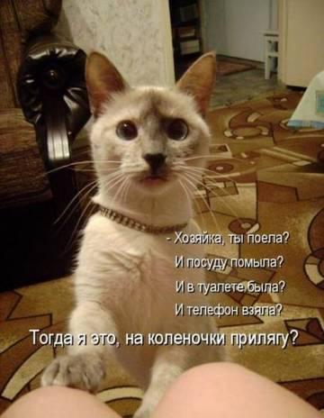 http://sh.uploads.ru/t/V8eoY.jpg