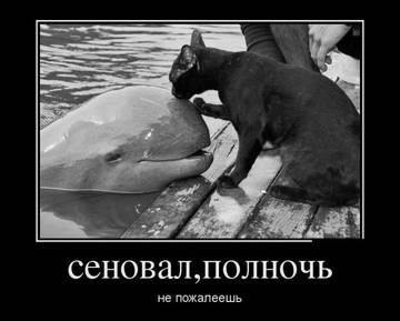 http://sh.uploads.ru/t/VAni8.jpg